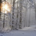 What to Love About Winter